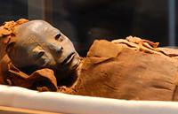 El mejor remedio: El polvo de momia.